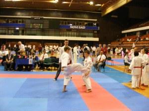 Hinode_karate_skdun_2013_081