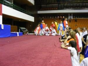 Hinode_karate_skdun_2013_082