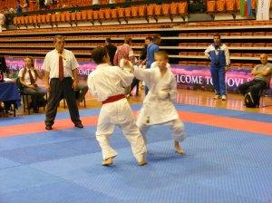 Hinode_karate_skdun_2013_083