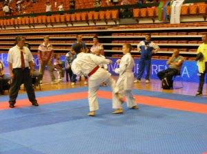 Hinode_karate_skdun_2013_084