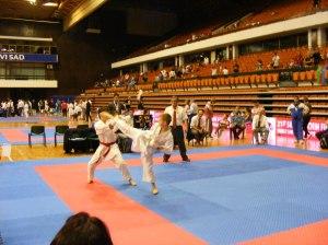 Hinode_karate_skdun_2013_085