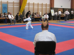 Hinode_Karate_Atarashi_2013_16