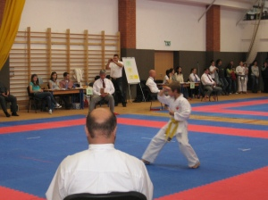 Hinode_Karate_Atarashi_2013_17