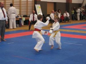 Hinode_Karate_Atarashi_2013_30