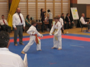 Hinode_Karate_Atarashi_2013_33