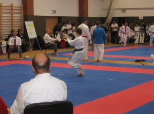 Hinode_Karate_Atarashi_2013_37