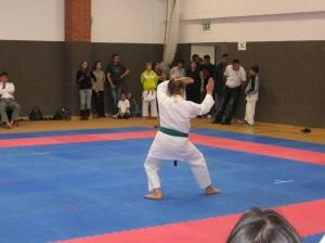Hinode_Karate_Atarashi_2013_44