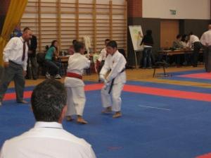 Hinode_Karate_Atarashi_2013_46