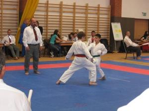 Hinode_Karate_Atarashi_2013_48