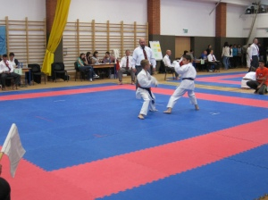 Hinode_Karate_Atarashi_2013_63
