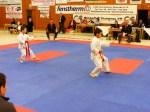 Hinode_Karate_SKS_2014_004
