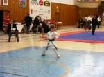 Hinode_Karate_SKS_2014_012
