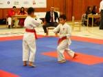 Hinode_Karate_SKS_2014_014