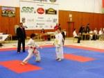 Hinode_Karate_SKS_2014_017