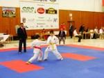 Hinode_Karate_SKS_2014_018