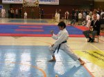 Hinode_Karate_SKS_2014_025