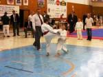 Hinode_Karate_SKS_2014_030