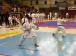 Hinode_Karate_SKS_2014_039