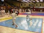Hinode_Karate_SKS_2014_044