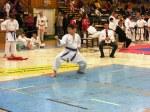 Hinode_Karate_SKS_2014_050