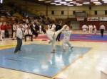 Hinode_Karate_SKS_2014_056