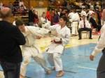 Hinode_Karate_SKS_2014_060