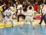 Hinode_Karate_SKS_2014_062