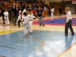 Hinode_Karate_SKS_2014_065