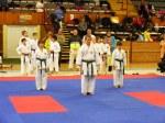 Hinode_Karate_SKS_2014_066