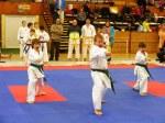 Hinode_Karate_SKS_2014_067