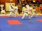 Hinode_Karate_SKS_2014_068