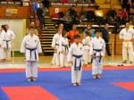 Hinode_Karate_SKS_2014_069
