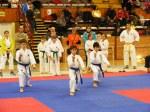 Hinode_Karate_SKS_2014_070