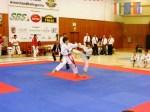 Hinode_Karate_SKS_2014_080