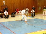 Hinode_Karate_SKS_2014_083