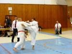 Hinode_Karate_SKS_2014_090