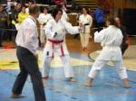 Hinode_Karate_SKS_2014_113