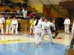 Hinode_Karate_SKS_2014_117
