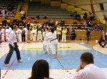 Hinode_Karate_SKS_2014_119