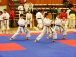 Hinode_Karate_SKS_2014_125