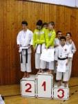 Hinode_Karate_SKS_2014_151