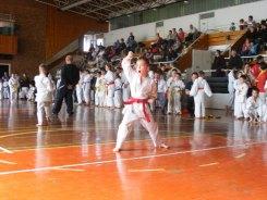 Hinode_karate_kazincbarcika_2014_001007
