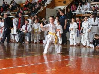 Hinode_karate_kazincbarcika_2014_001009
