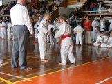 Hinode_karate_kazincbarcika_2014_001011