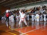 Hinode_karate_kazincbarcika_2014_001015