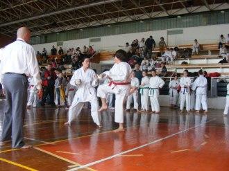 Hinode_karate_kazincbarcika_2014_001017