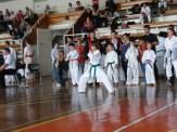 Hinode_karate_kazincbarcika_2014_001023