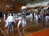 Hinode_karate_kazincbarcika_2014_001025