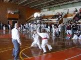 Hinode_karate_kazincbarcika_2014_001026