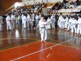 Hinode_karate_kazincbarcika_2014_001036